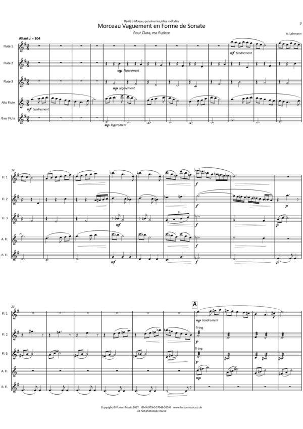 Morceau Vaguement en Forme de Sonata